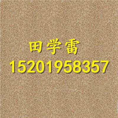 PVC底方块地毯防潮防火隔音台球室出租房仓库特价