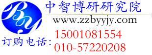 中国游乐场设备行业运行态势及发展趋势预测分析报告