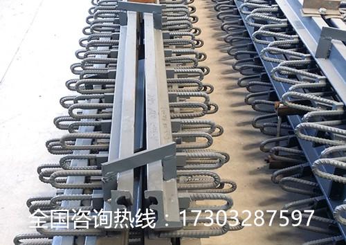 江门伸缩缝厂家17303287597