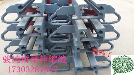 防城港GQF-D80型公路桥梁伸缩缝厂家17303287597