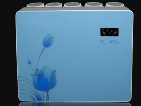 莱芜纯水机、买家用纯水机认准彦雨环保