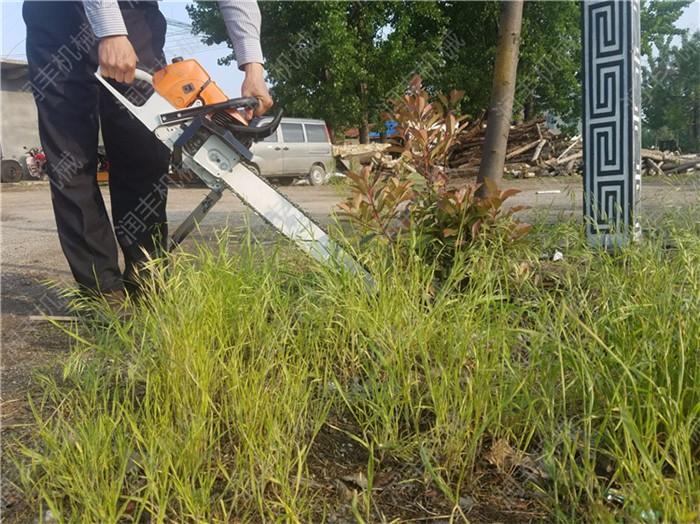 昆明新款汽油动力挖树机昆明合金链条式带土球挖树机