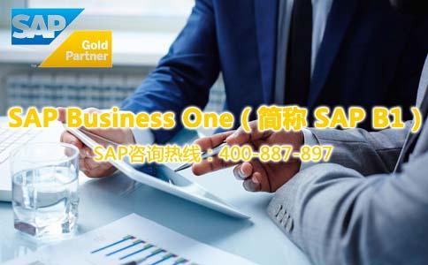 南京SAP BI系统 SAP ERP软件实施商 南京达策软件开发公司