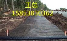 欢迎您泰州玻纤格栅生产商1585383O362