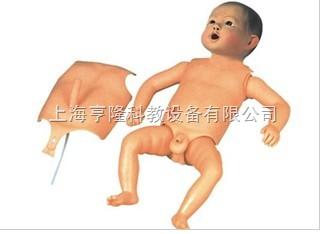 人体解剖模型尺寸定位模型