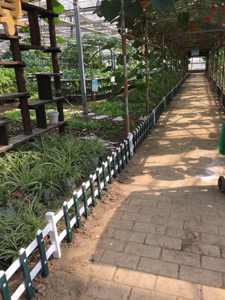 广东云浮塑钢草坪护栏哪里有卖