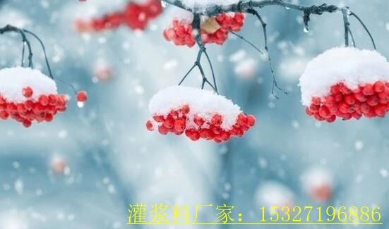 评选扶沟县隧道灌浆料活动厂家周年庆
