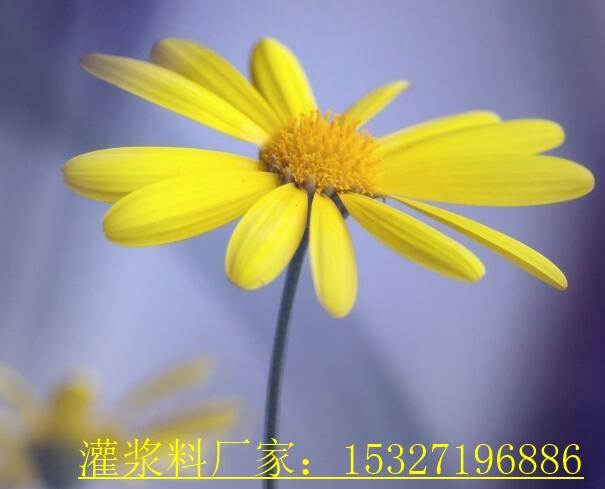 销售清单莲花县通用型灌浆料价格查询
