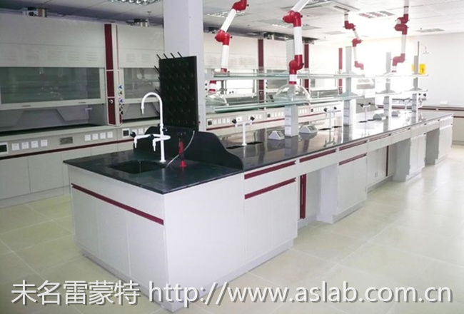 未名雷蒙特提供优质实验室家具