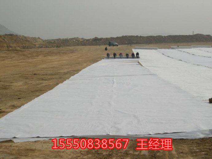 河北复合土工膜达标出口专业制造