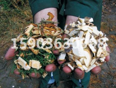 信用菌粉碎机铜仁地区发货现场经营项目