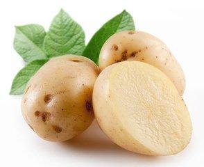 济南土豆批发_划算的土豆供应,就在山东万泰蔬菜