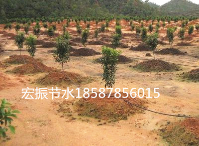 广西南宁柳州百色崇左河池来宾贵港玉林北海钦州桂林滴灌喷灌价格