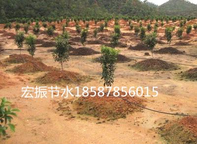 南宁武鸣横县马山上林隆安宾阳滴灌喷灌多少钱一亩
