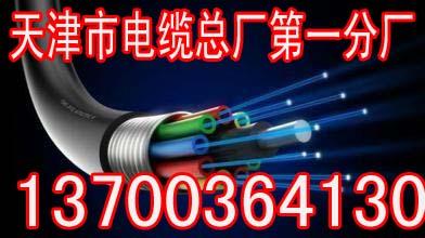 大连紫色2芯电缆规格型号