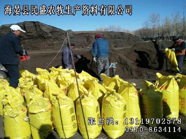 羊粪-合理的羊粪有机肥民盛农牧生产供应