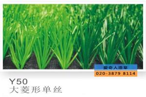 莆田绿色环保草生产商