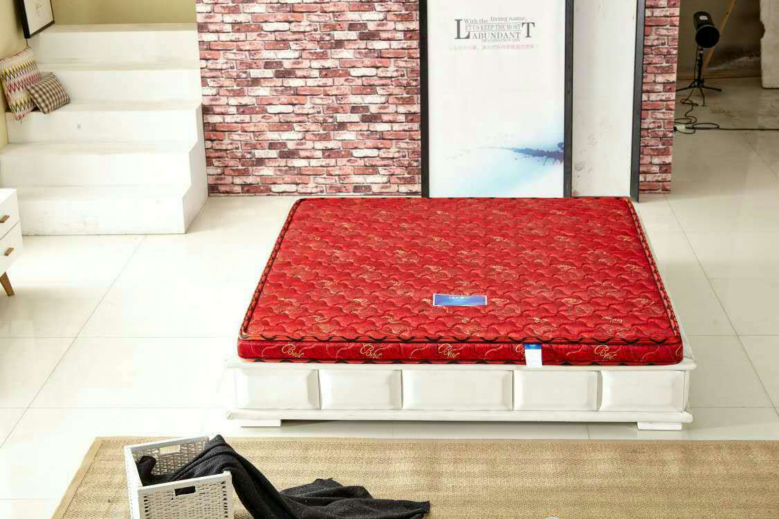 伯兰蒂斯弹簧床垫-小鱼儿心水2站直销的椰棕床垫-玉田古力床垫厂