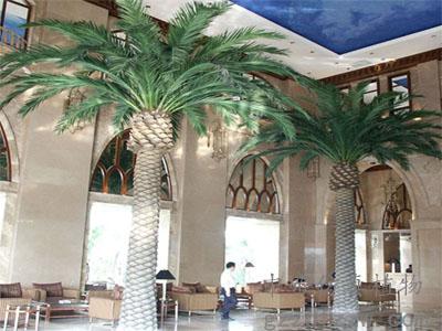 仿真海藻树供应商哪家好,中东海藻树