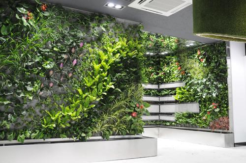 供应各种规格植物墙