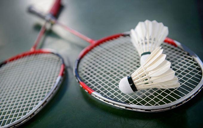 雪燕体育提供优质羽毛球-塑料羽毛球