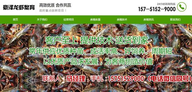 长泰县养殖龙虾利润-长泰县龙虾种苗价钱多少