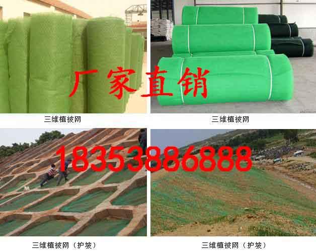衡阳单向塑料格栅三维植被网市场价格单向塑料格栅-工程材料