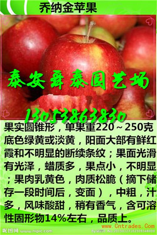 广西贵港桃树苗主产区才卖多少钱一棵销售