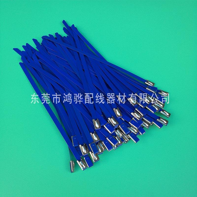 10宽乌钢自锁式出有锈钢扎带,304出有锈钢扎带厂家,东莞鸿骅