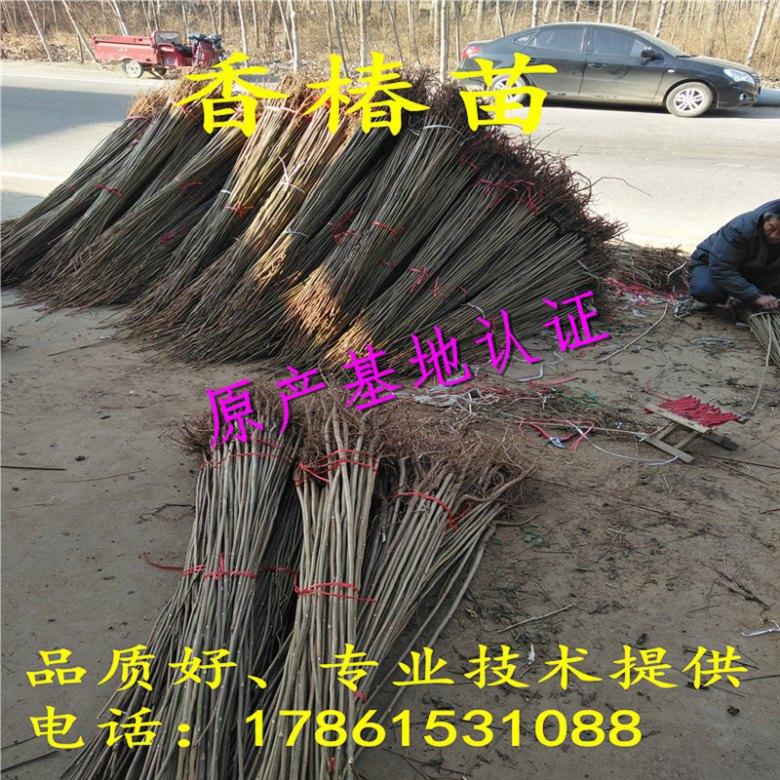 http://pic.ynshangji.com/00user/product0_39/2018-2-7/628823-21333647.jpg