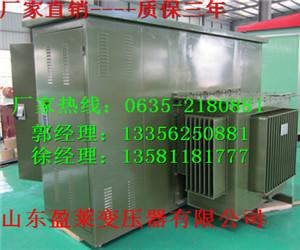S11-M-125KVA油浸式电力变压器新兴县