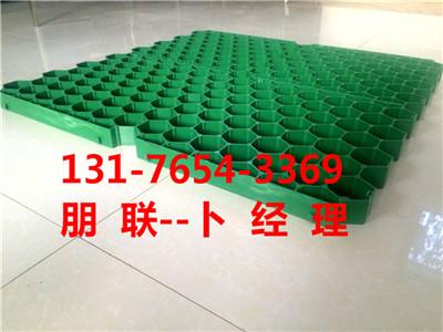呼和浩特植草格专业厂家5公分塑料植草格