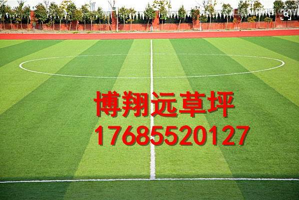 咸阳乾县屋顶足球场塑料草坪-怎么卖