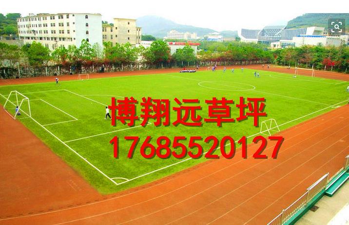 郑州惠济区优质足球场塑料草坪怎么安装