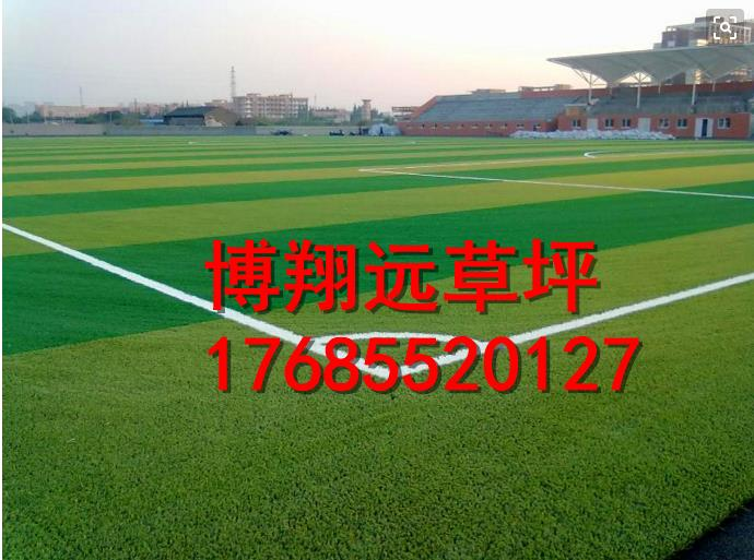定西漳县标准足球场人造草坪地毯排行榜