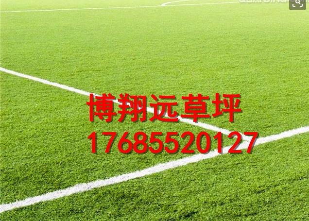 信阳息县11人制足球场塑料草坪安装步骤