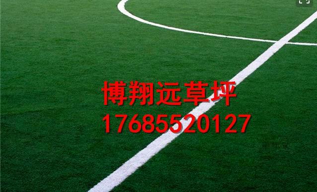 安庆潜山县小型足球场塑料草坪市场价格