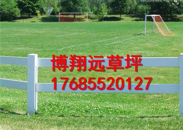 黑河北安小型足球场人工草坪出售