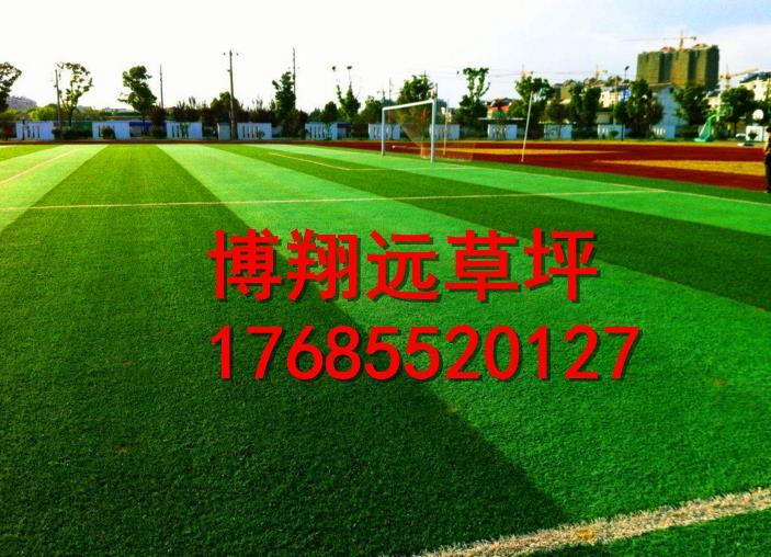 昭通威信县小型足球场人造草坪哪里买
