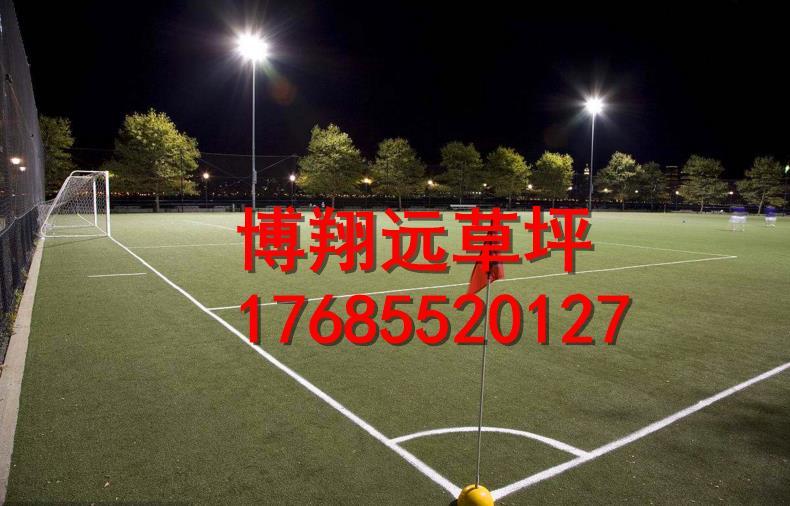防城港东兴五人制足球场塑料草坪多少钱一平