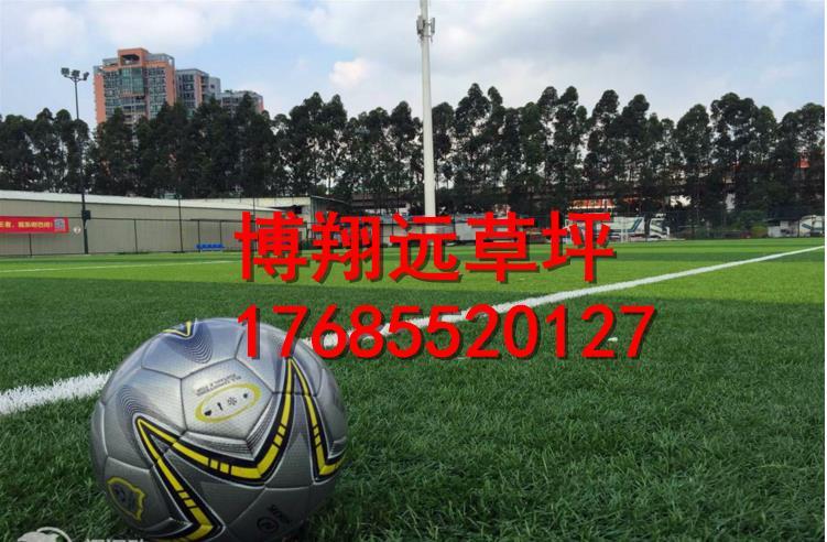 哈尔滨标准足球场塑料草坪生产厂家