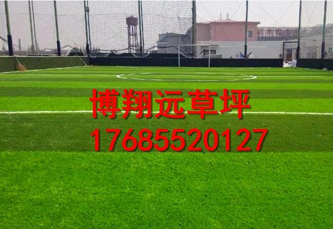 内蒙古自治区兴安盟填充足球场塑料草坪怎么安装