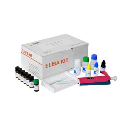 供应生长停滞DNA损伤可诱导蛋白酶联免疫ELISA试剂盒实验说明书