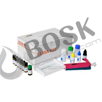 供应唾液皮质醇酶联免疫ELISA试剂盒实验说明书