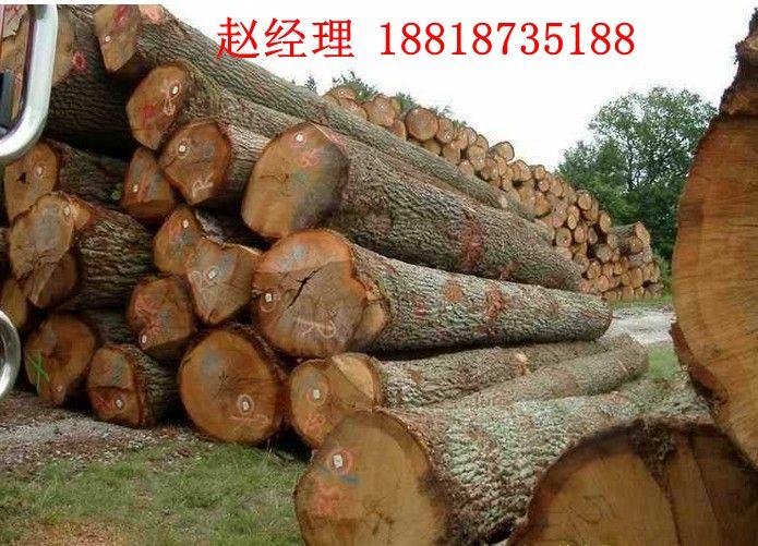 粉末木材防虫剂 家具防白蚁剂