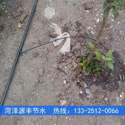渭南果树小管出流滴灌滴头安装方案