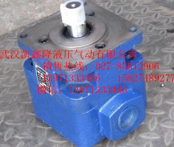 山西省晋城市城YYB1-AA16/26B-Y2轴向柱塞泵
