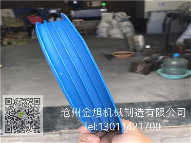 D250燃气管内盖,SDR17.6燃气管内帽,蓝色燃气管堵塞
