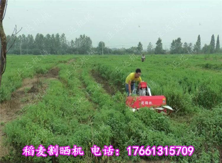 龙泉稻谷割晒机龙泉1.2米宽辣椒收割机