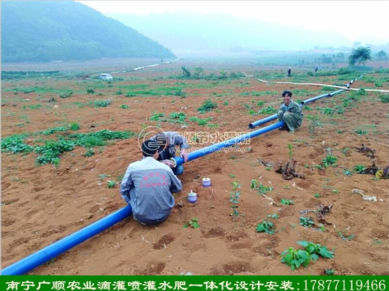 现场指导广西农业种植的朋友安装滴灌水肥一体化